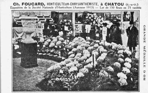 FoucardChrysantème.jpg