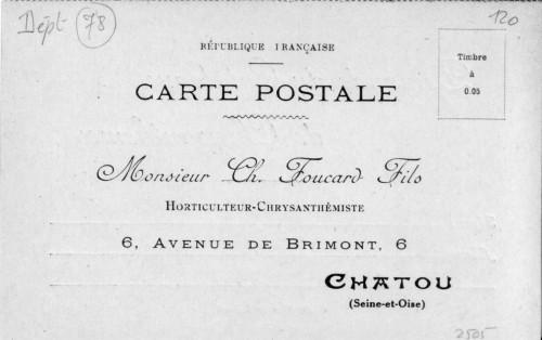FoucardChrysantème2.jpg